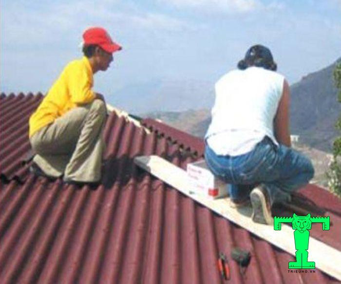 Lắp đặt tấm sinh thái chuẩn kỹ thuật là phải dùng ván lót khi đi lại trên mái