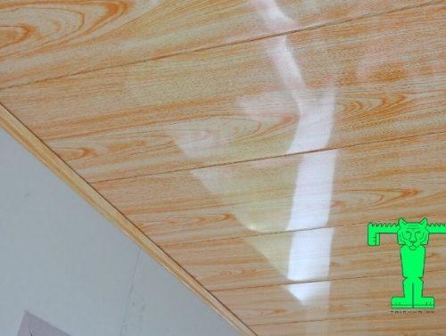 trần tôn giả gỗ